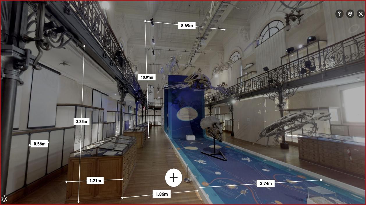 La salle de la Baleine du Musée de Monaco